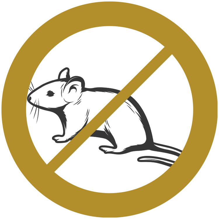 Mice & Rodents Control